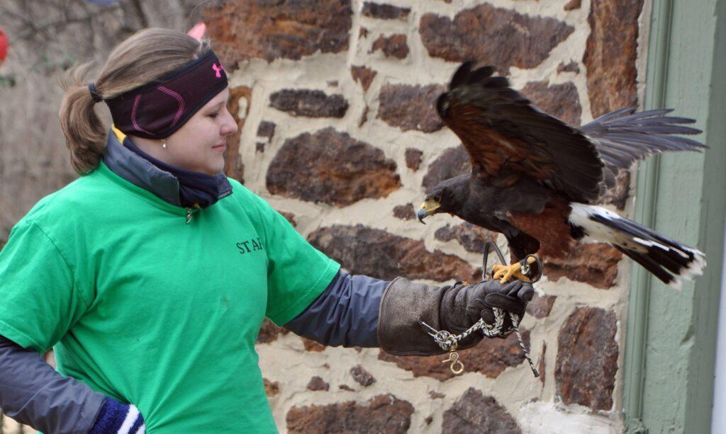 wildlife education program